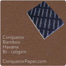 Paper Bamboo Havana B1-700x1000mm 120gsm