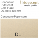 Envelopes Iridescent Gold Haze DL-110x220mm 120gsm