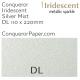 Envelopes Iridescent Silver Mist DL-110x220mm 120gsm
