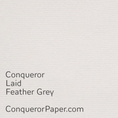 Feather Grey Laid